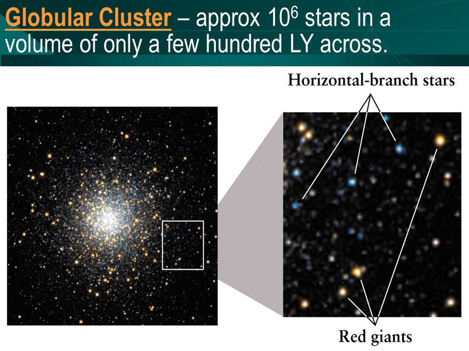 Globular Cluster – approx 10 6 stars in a volume of only a few hundred LY across.