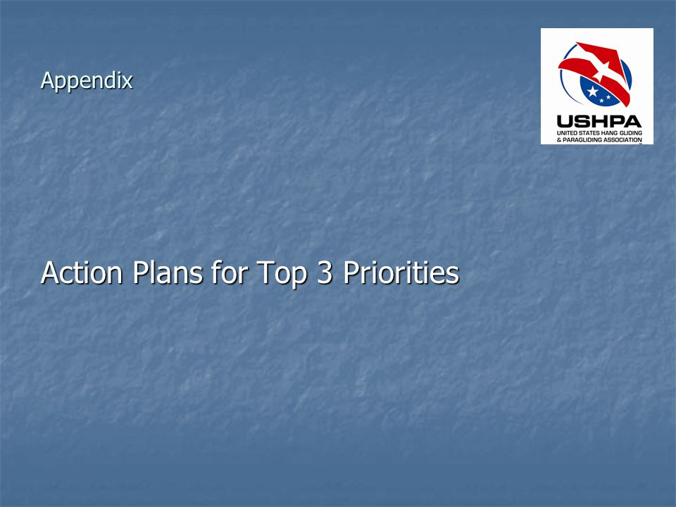 Appendix Action Plans for Top 3 Priorities