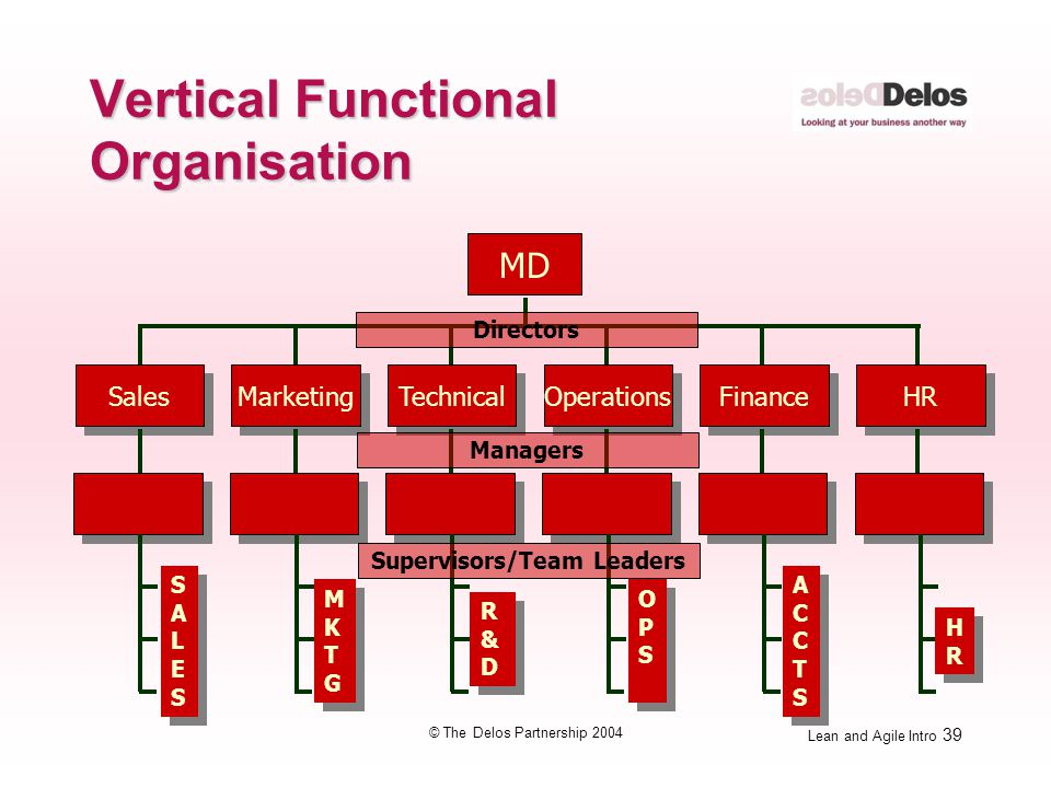 Lean and Agile Intro 39 © The Delos Partnership 2004 Vertical Functional Organisation MD Sales Marketing Technical Operations Finance HR R&DR&D R&DR&D