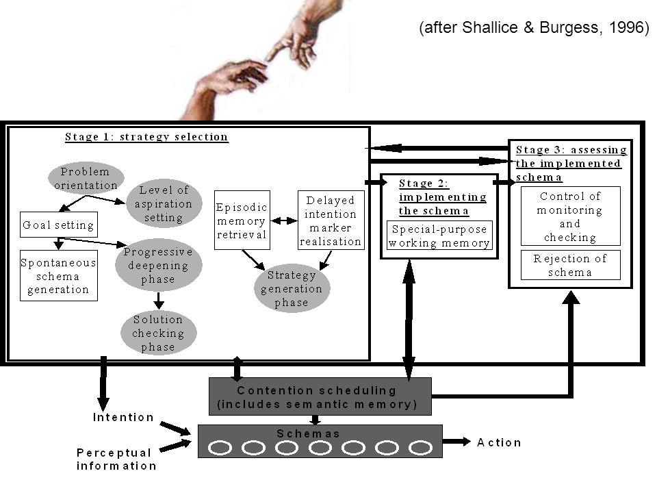 (after Shallice & Burgess, 1996)