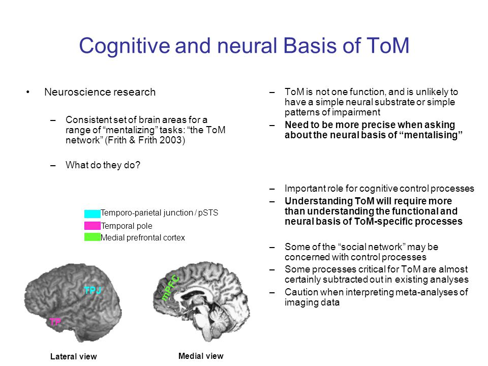 Cognitive and neural Basis of ToM –ToM is not one function, and is unlikely to have a simple neural substrate or simple patterns of impairment –Need t
