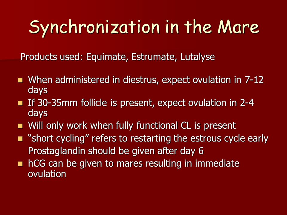 Synchronization in the Mare Products used: Equimate, Estrumate, Lutalyse Products used: Equimate, Estrumate, Lutalyse When administered in diestrus, expect ovulation in 7-12 days When administered in diestrus, expect ovulation in 7-12 days If 30-35mm follicle is present, expect ovulation in 2-4 days If 30-35mm follicle is present, expect ovulation in 2-4 days Will only work when fully functional CL is present Will only work when fully functional CL is present short cycling refers to restarting the estrous cycle early short cycling refers to restarting the estrous cycle early Prostaglandin should be given after day 6 hCG can be given to mares resulting in immediate ovulation hCG can be given to mares resulting in immediate ovulation