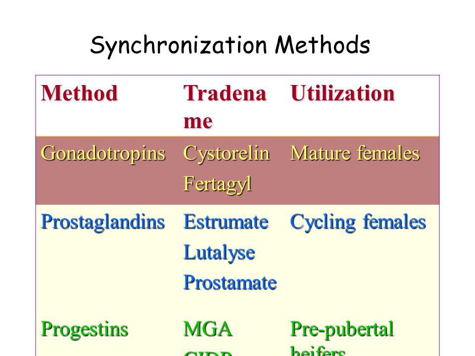 Method Tradena me Utilization GonadotropinsCystorelinFertagyl Mature females ProstaglandinsEstrumateLutalyseProstamate Cycling females ProgestinsMGACIDR Pre-pubertal heifers Post-partum or Anestrous females Synchronization Methods