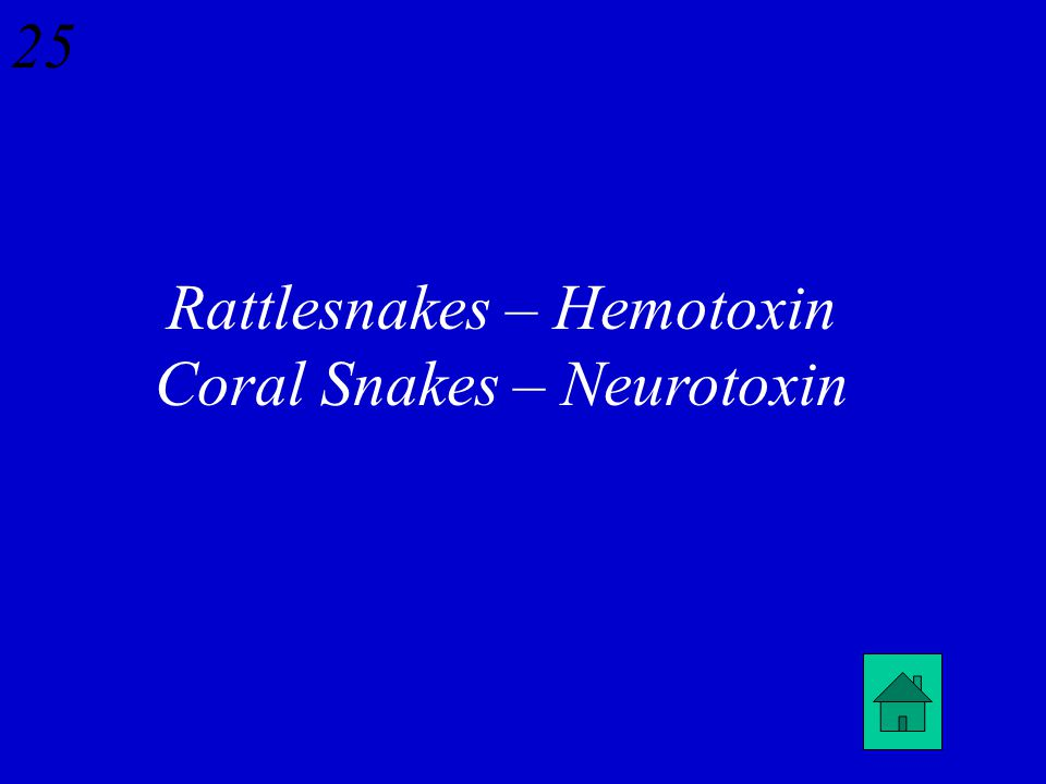 24 What is the difference between the toxins of rattle snakes and coral snakes