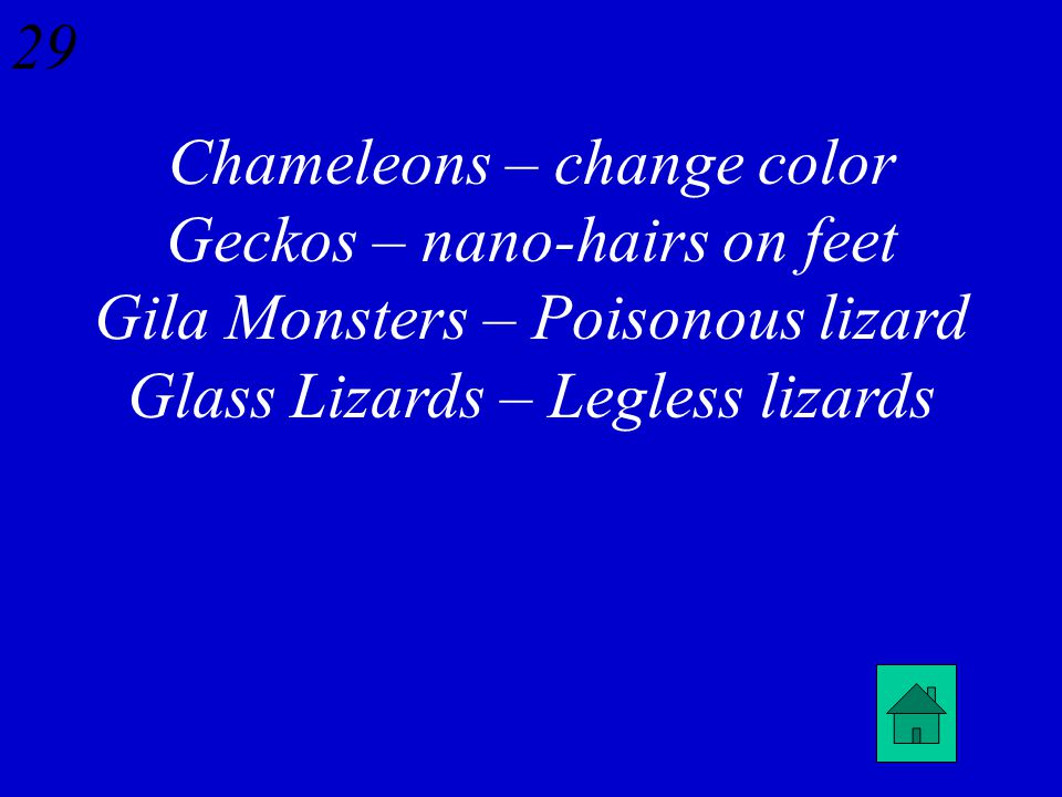 28 Name something unique about the following lizards: Chameleons Geckos Gila Monsters Glass Lizards
