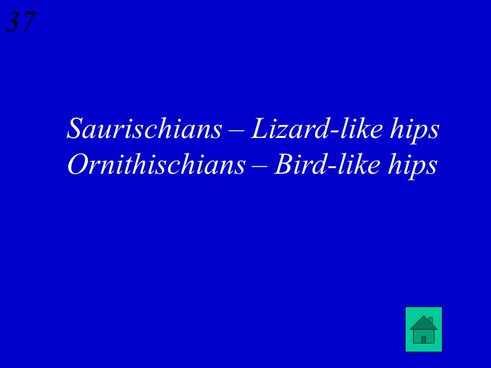 36 How are Saurischian dinosaurs distinguished from Ornithischian dinosaurs