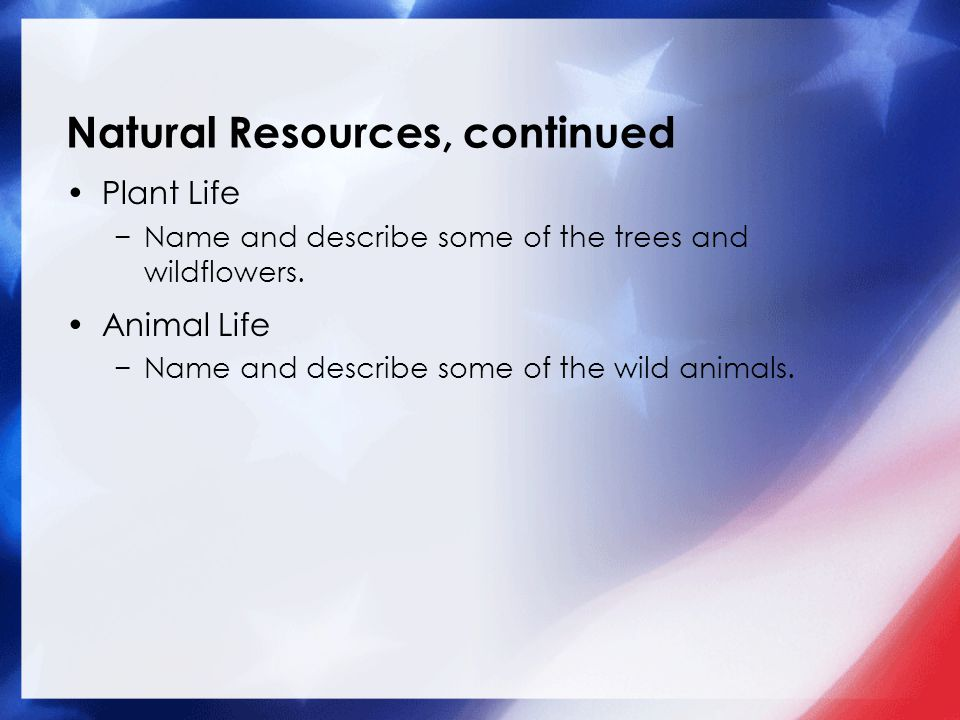 Natural Resources, continued Plant Life −Name and describe some of the trees and wildflowers.