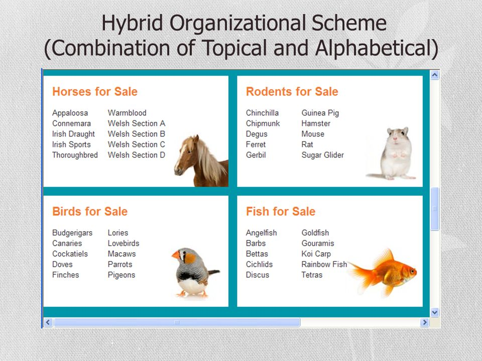Hybrid Organizational Scheme (Combination of Topical and Alphabetical)
