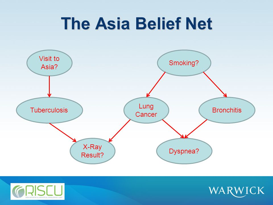 The Asia Belief Net Visit to Asia? Smoking? Tuberculosis Lung Cancer Bronchitis X-Ray Result? Dyspnea?