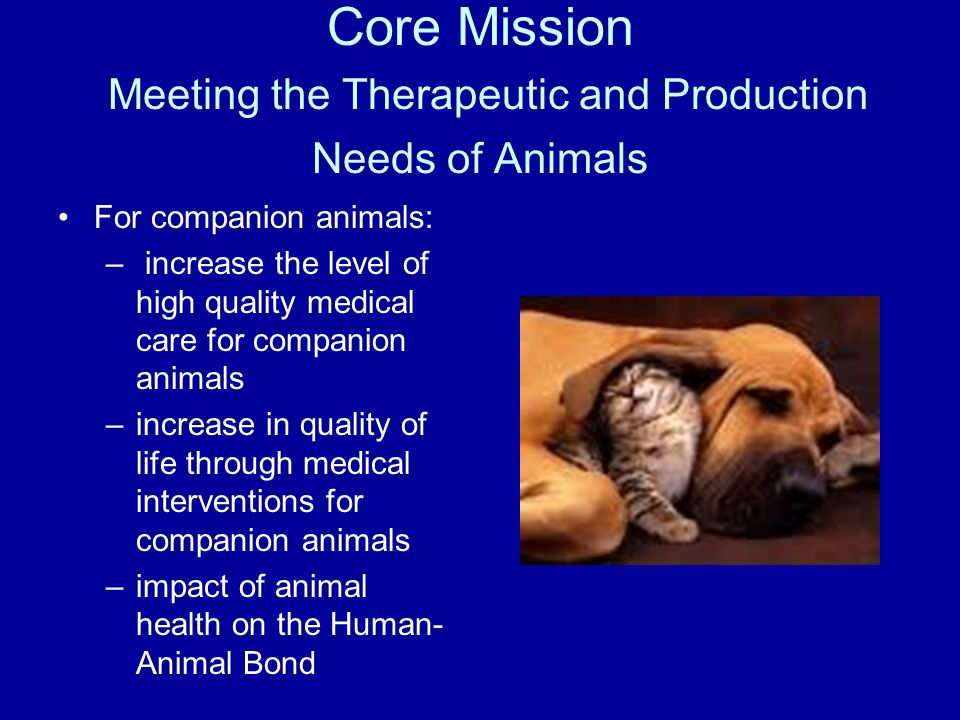 For companion animals: – increase the level of high quality medical care for companion animals –increase in quality of life through medical interventions for companion animals –impact of animal health on the Human- Animal Bond Core Mission Meeting the Therapeutic and Production Needs of Animals