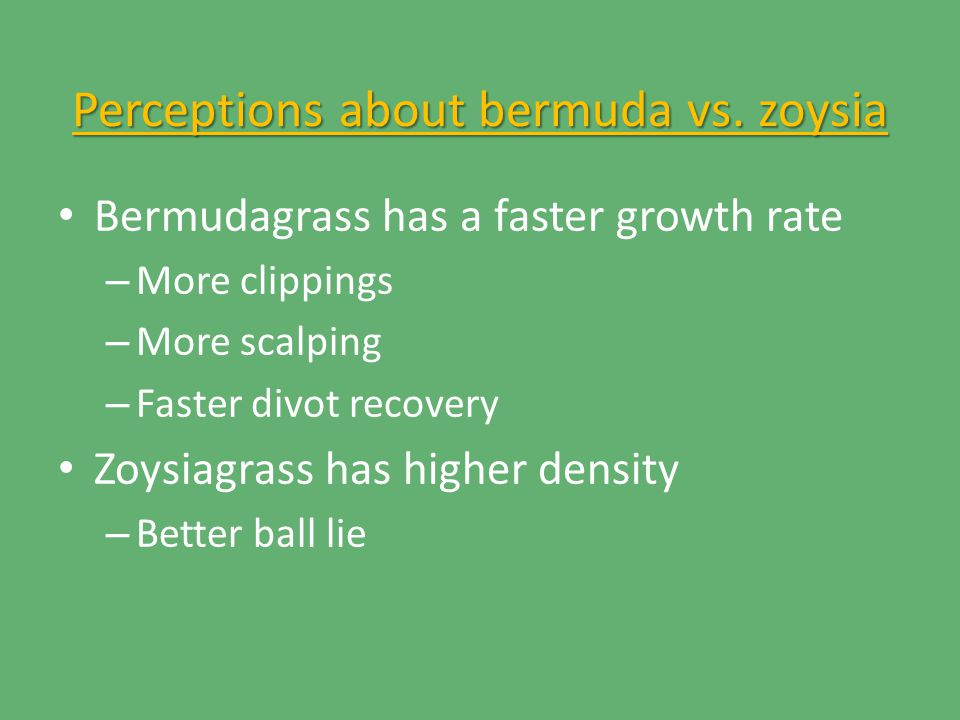 Perceptions about bermuda vs.