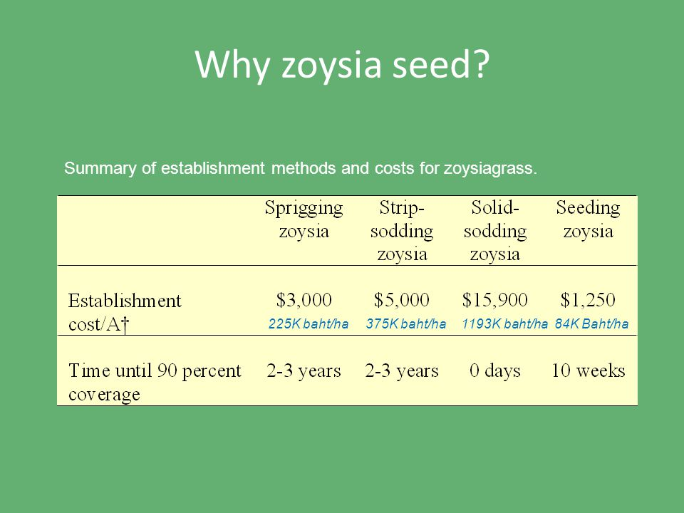 Why zoysia seed. Summary of establishment methods and costs for zoysiagrass.