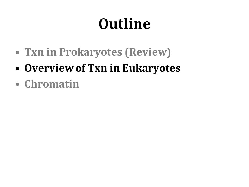 Outline Txn in Prokaryotes (Review) Overview of Txn in Eukaryotes Chromatin
