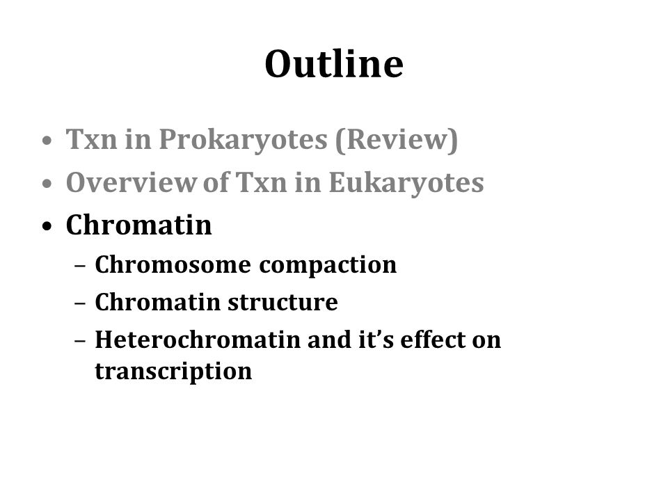 Outline Txn in Prokaryotes (Review) Overview of Txn in Eukaryotes Chromatin –Chromosome compaction –Chromatin structure –Heterochromatin and it's effect on transcription