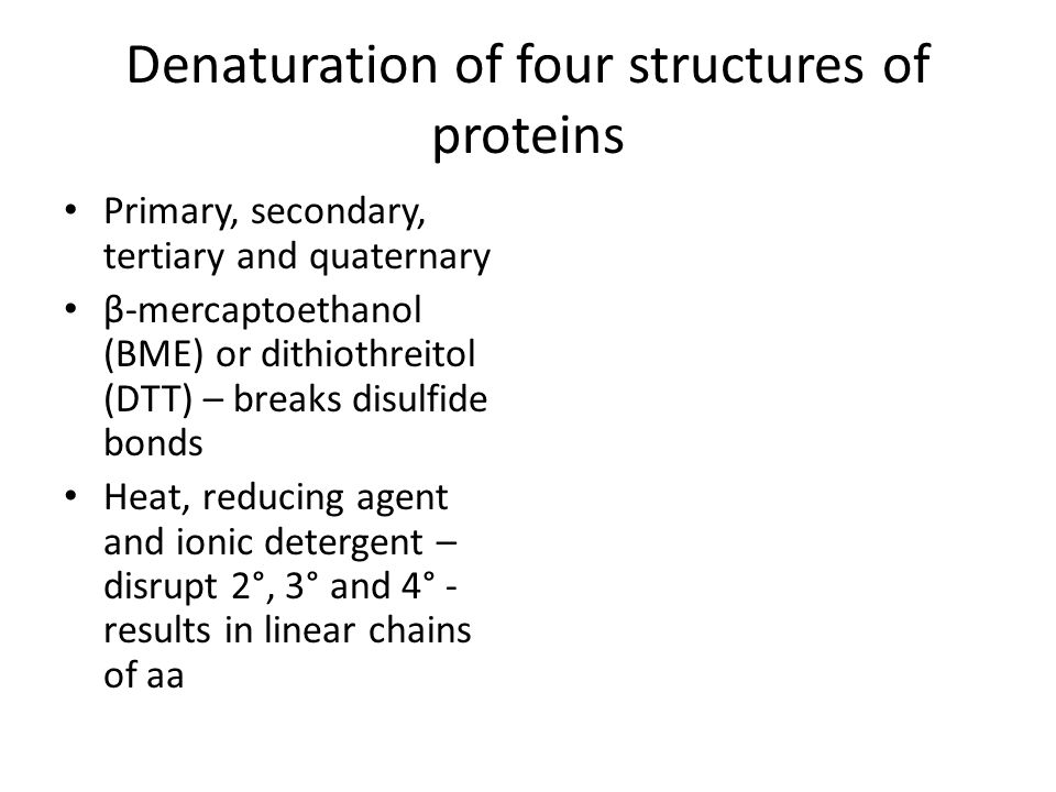 Denaturation of four structures of proteins Primary, secondary, tertiary and quaternary β-mercaptoethanol (BME) or dithiothreitol (DTT) – breaks disul