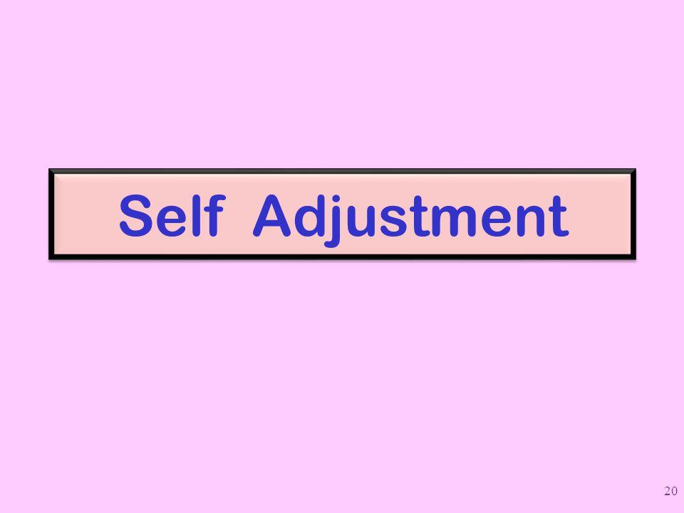 Self Adjustment 20