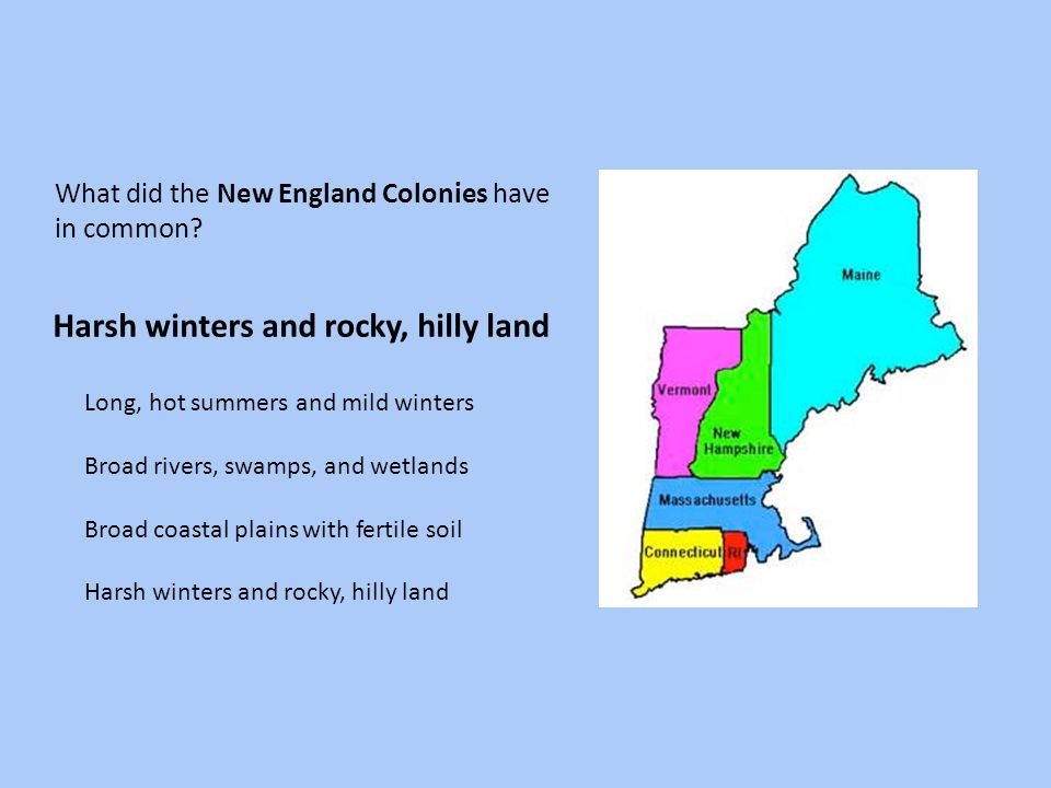 What did the New England Colonies have in common? Long, hot summers and mild winters Broad rivers, swamps, and wetlands Broad coastal plains with fert