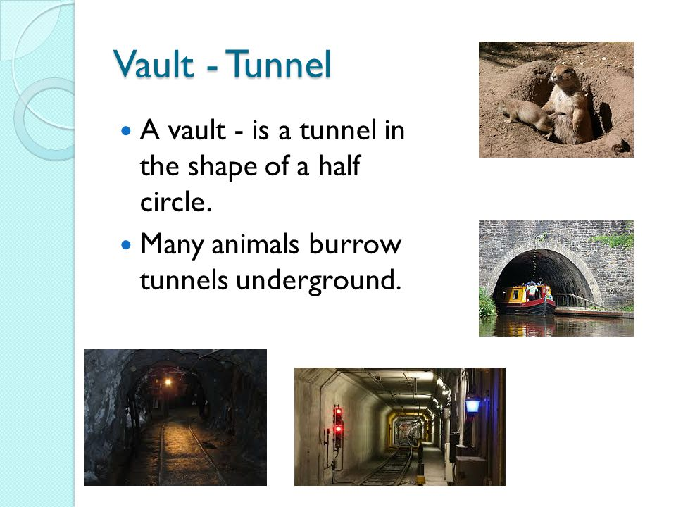 Vault - Tunnel A vault - is a tunnel in the shape of a half circle.