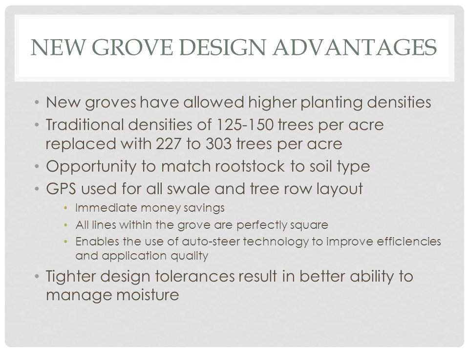 NEW GROVE DESIGN ADVANTAGES New groves have allowed higher planting densities Traditional densities of 125-150 trees per acre replaced with 227 to 303 trees per acre Opportunity to match rootstock to soil type GPS used for all swale and tree row layout Immediate money savings All lines within the grove are perfectly square Enables the use of auto-steer technology to improve efficiencies and application quality Tighter design tolerances result in better ability to manage moisture