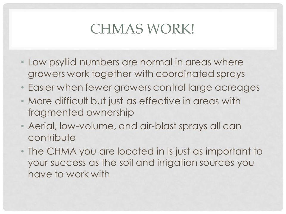 CHMAS WORK.