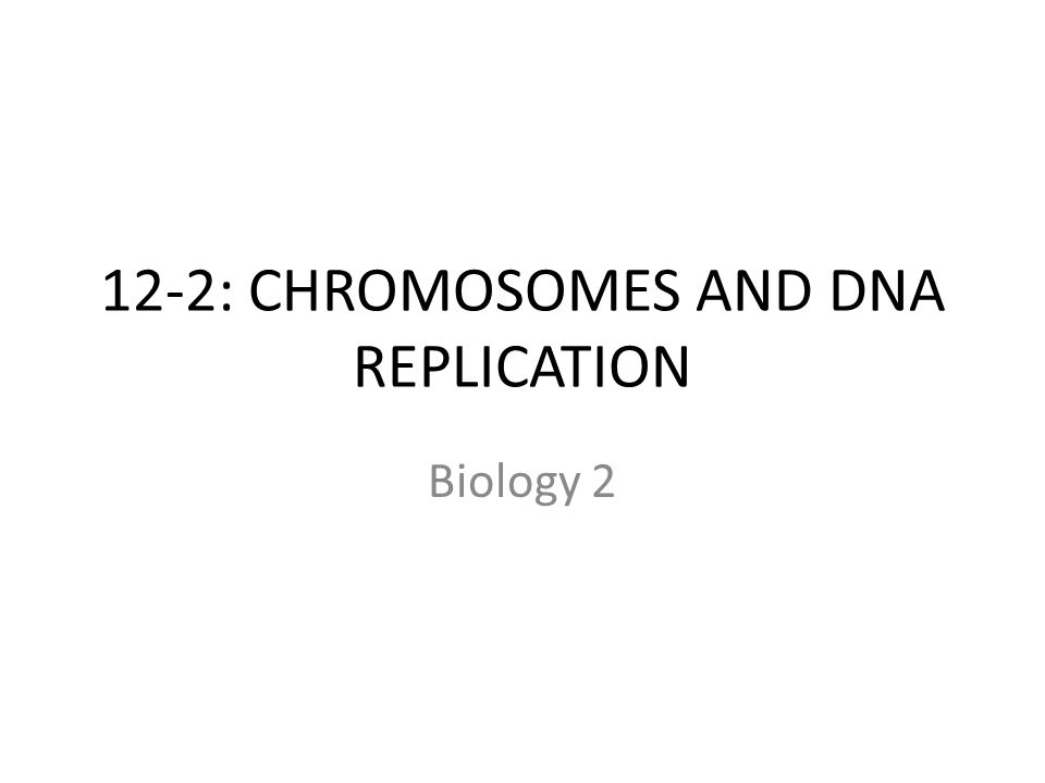 12-2: CHROMOSOMES AND DNA REPLICATION Biology 2