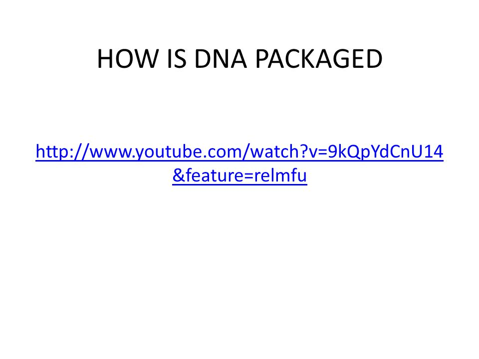 HOW IS DNA PACKAGED http://www.youtube.com/watch?v=9kQpYdCnU14 &feature=relmfu