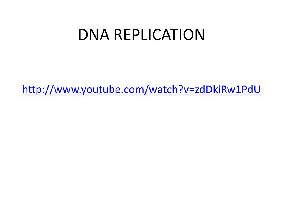 DNA REPLICATION http://www.youtube.com/watch?v=zdDkiRw1PdU