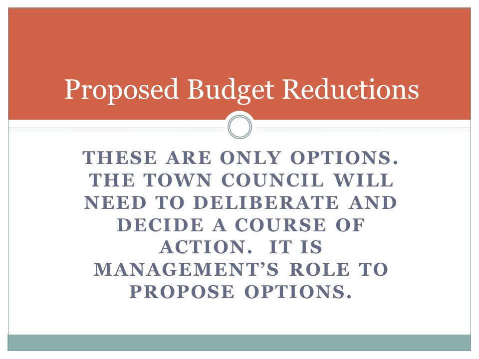 THESE ARE ONLY OPTIONS. THE TOWN COUNCIL WILL NEED TO DELIBERATE AND DECIDE A COURSE OF ACTION.
