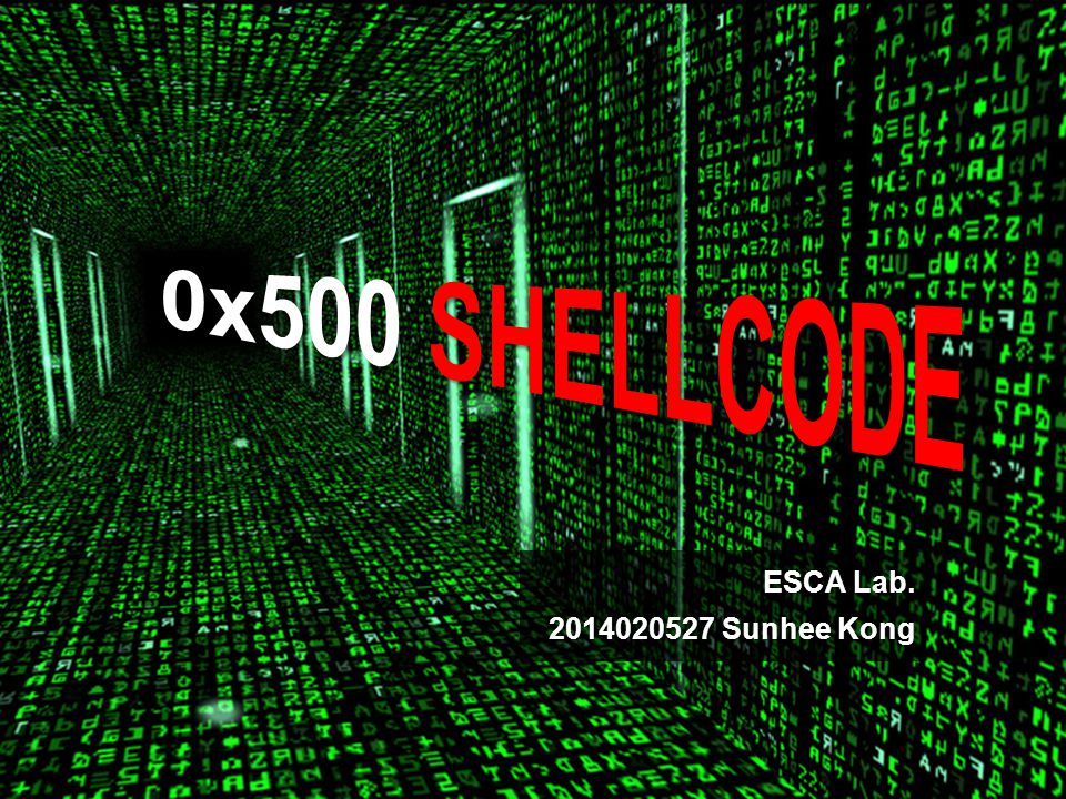 0x500 Shellcode Running program Shellcode A small piece of malicious code used as the payload in the exploitation of a software vulnerability.