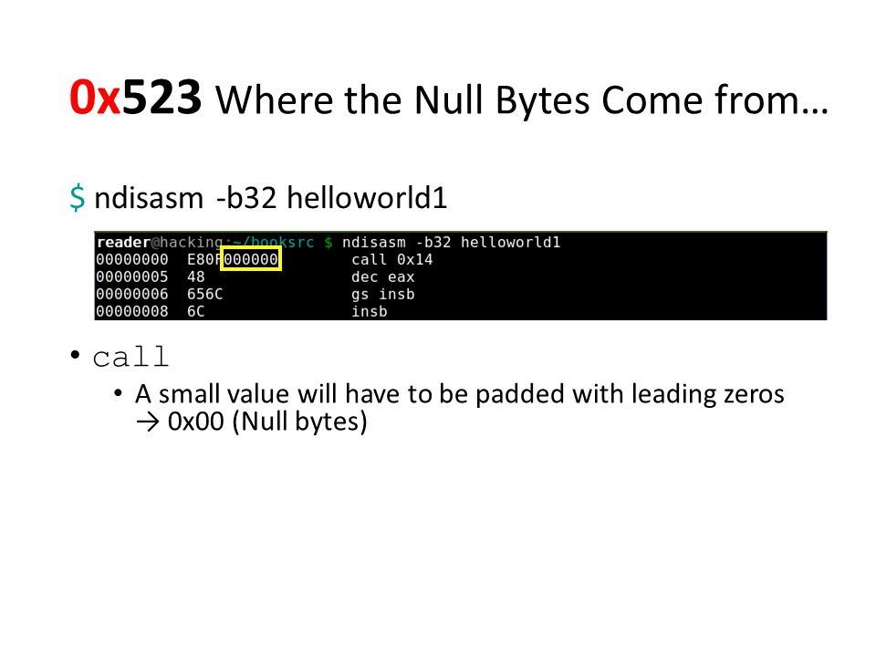 0x523 Where the Null Bytes Come from… $ ndisasm -b32 helloworld1 call A small value will have to be padded with leading zeros → 0x00 (Null bytes)