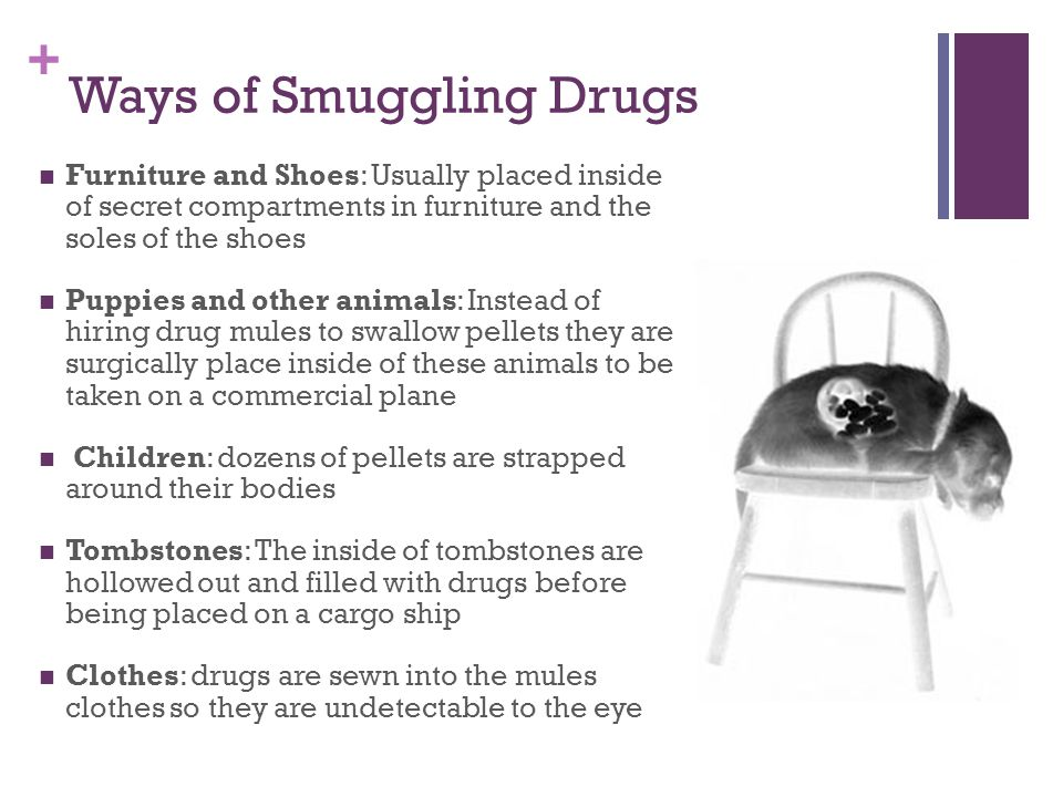 + Ways of Smuggling Drugs Furniture and Shoes: Usually placed inside of secret compartments in furniture and the soles of the shoes Puppies and other animals: Instead of hiring drug mules to swallow pellets they are surgically place inside of these animals to be taken on a commercial plane Children: dozens of pellets are strapped around their bodies Tombstones: The inside of tombstones are hollowed out and filled with drugs before being placed on a cargo ship Clothes: drugs are sewn into the mules clothes so they are undetectable to the eye