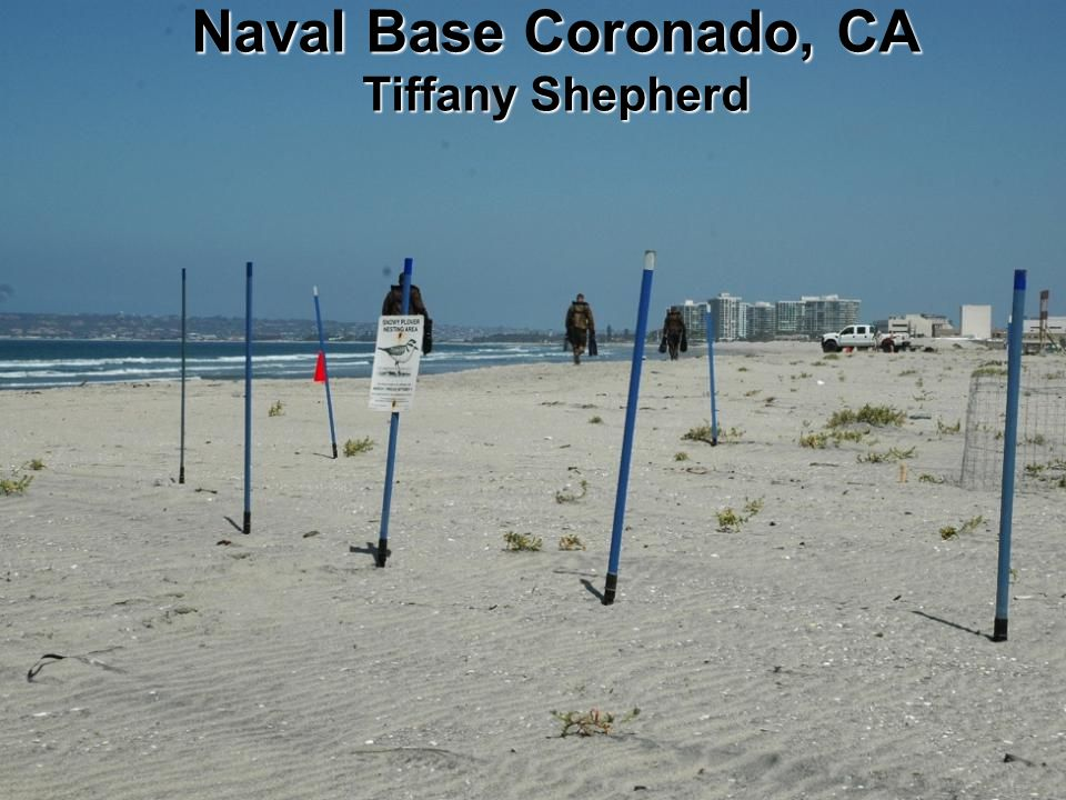 BUILDING STRONG ® Naval Base Coronado, CA Tiffany Shepherd