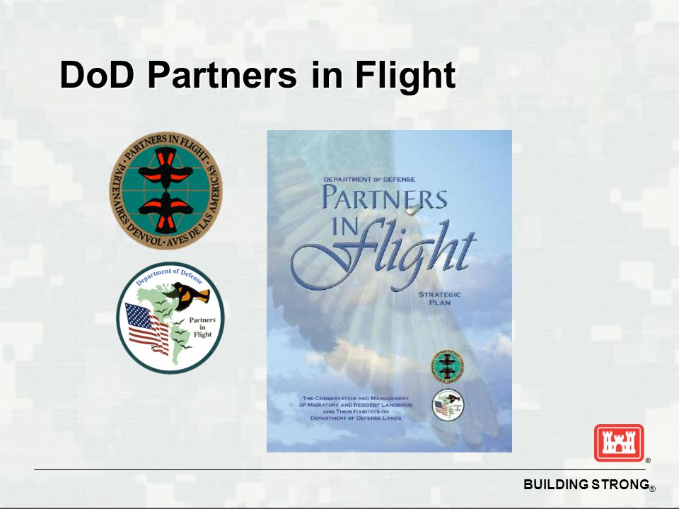 BUILDING STRONG ® DoD Partners in Flight