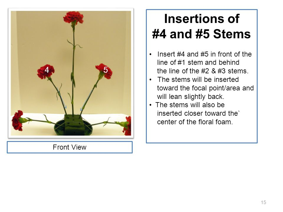15 Insertions of #4 and #5 Stems Insert #4 and #5 in front of the line of #1 stem and behind the line of the #2 & #3 stems. The stems will be inserted