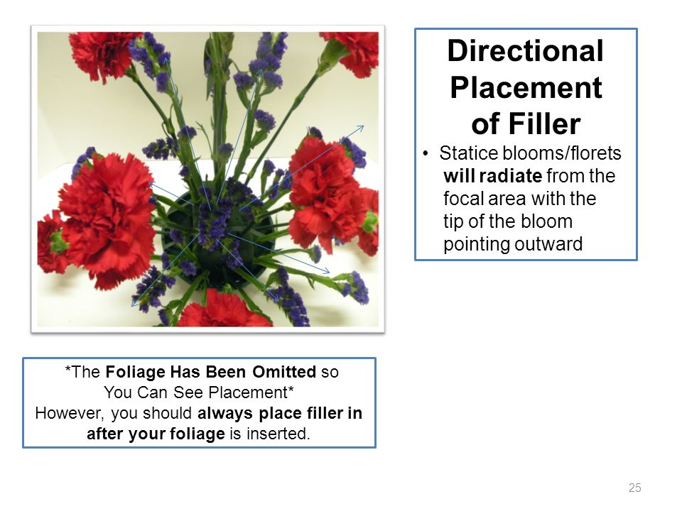 25 Directional Placement of Filler Statice blooms/florets will radiate from the focal area with the tip of the bloom pointing outward *The Foliage Has