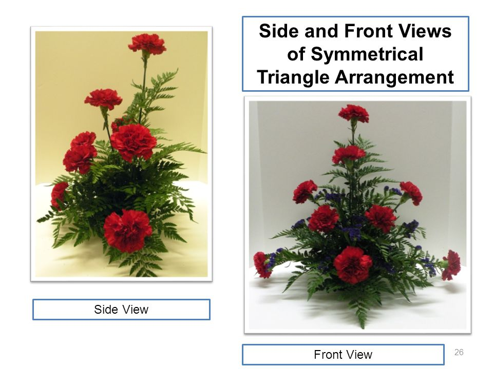 26 Side and Front Views of Symmetrical Triangle Arrangement Front View Back View Side View