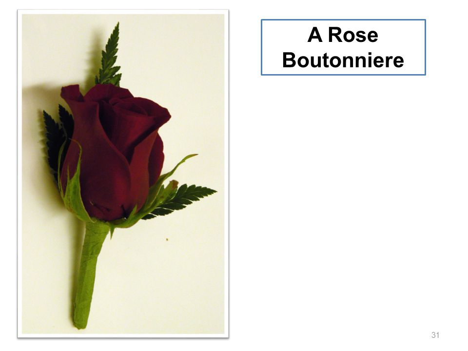 31 A Rose Boutonniere