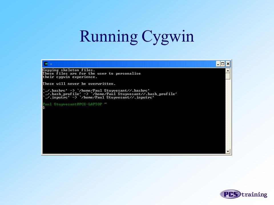 Running Cygwin