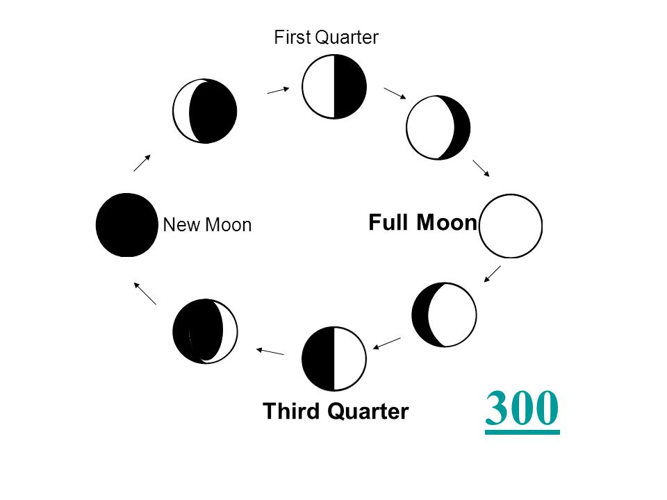 Fill in the missing blanks of the lunar cycle.