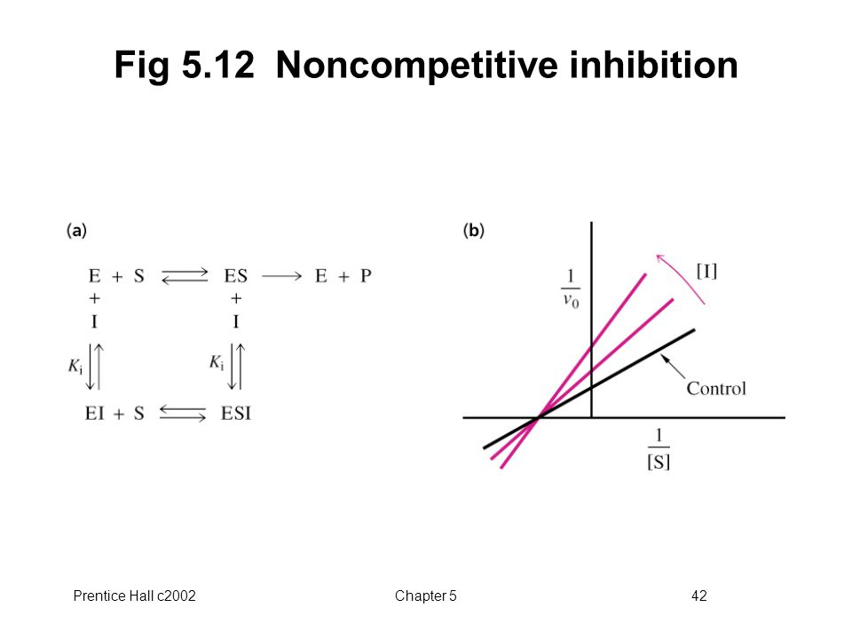 Prentice Hall c2002Chapter 542 Fig 5.12 Noncompetitive inhibition
