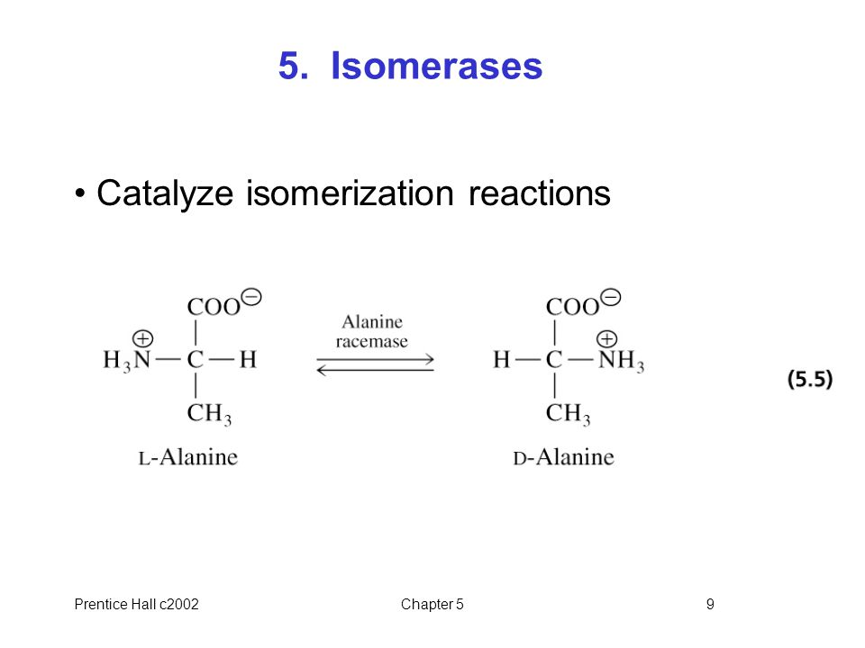 Prentice Hall c2002Chapter 59 5. Isomerases Catalyze isomerization reactions