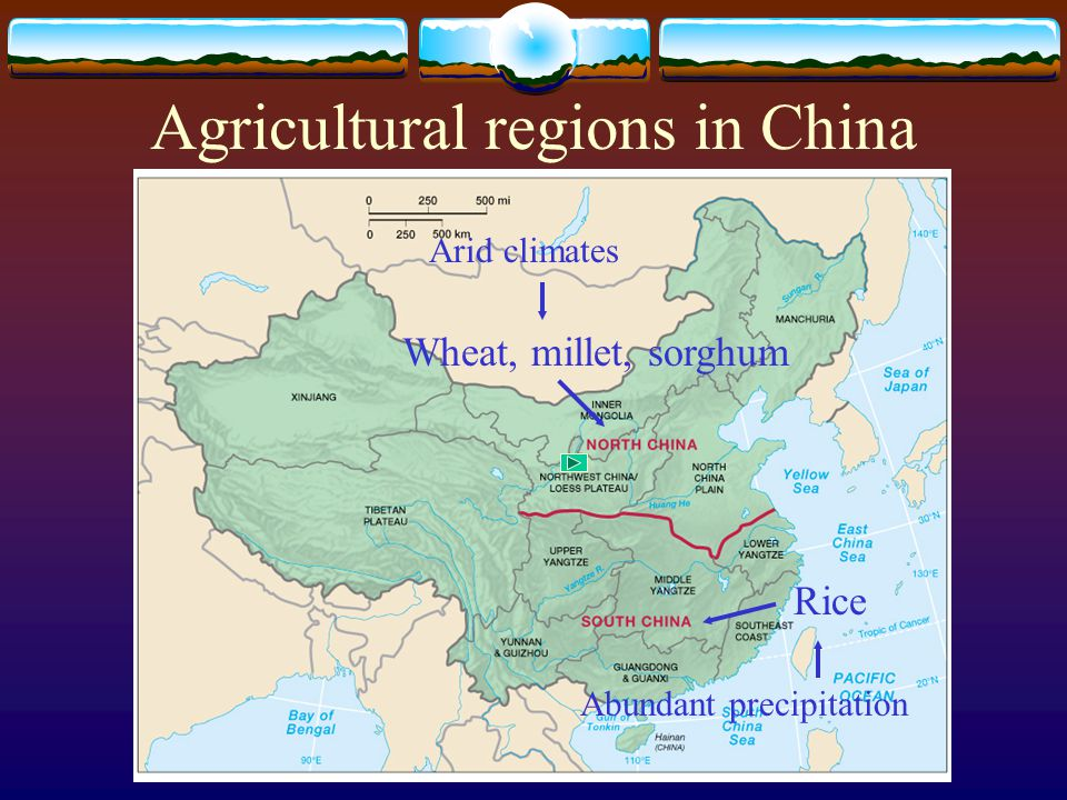 Agricultural regions in China Rice Wheat, millet, sorghum Abundant precipitation Arid climates