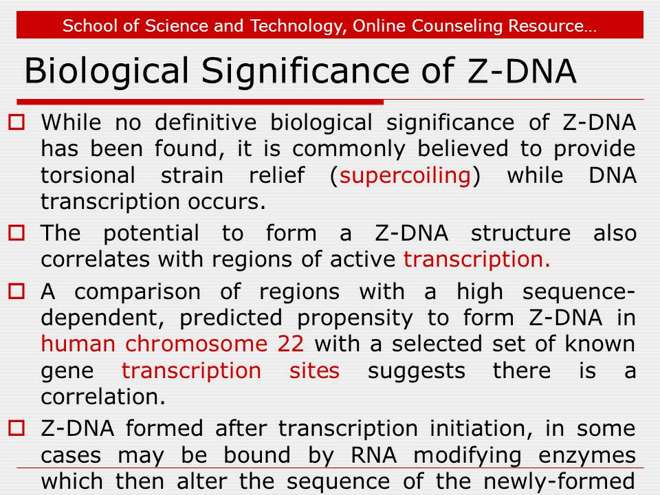 School of Science and Technology, Online Counseling Resource… Biological Significance of Z-DNA  While no definitive biological significance of Z-DNA has been found, it is commonly believed to provide torsional strain relief (supercoiling) while DNA transcription occurs.