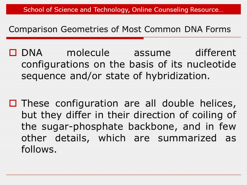 School of Science and Technology, Online Counseling Resource… Comparison Geometries of Most Common DNA Forms  DNA molecule assume different configurations on the basis of its nucleotide sequence and/or state of hybridization.