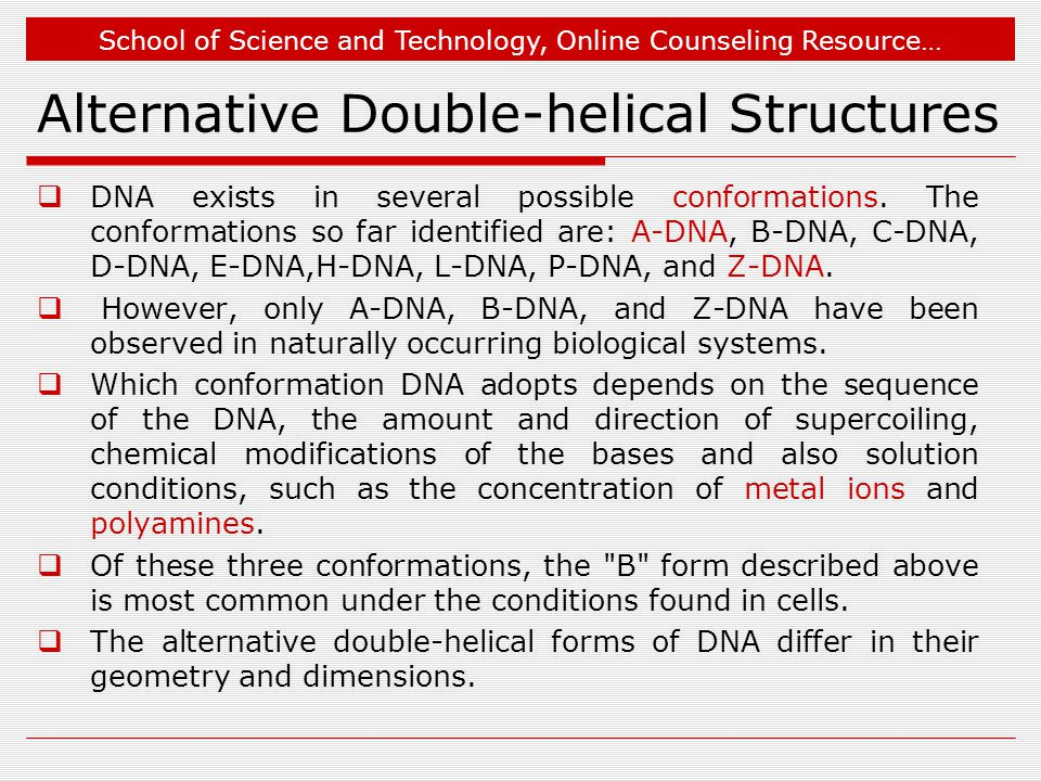 School of Science and Technology, Online Counseling Resource… Alternative Double-helical Structures  DNA exists in several possible conformations.