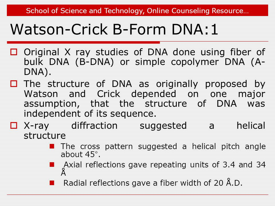 School of Science and Technology, Online Counseling Resource… Watson-Crick B-Form DNA:1  Original X ray studies of DNA done using fiber of bulk DNA (B-DNA) or simple copolymer DNA (A- DNA).