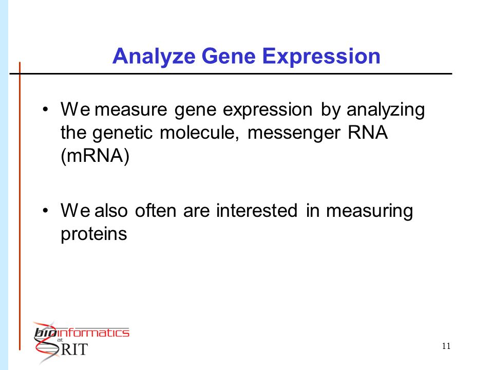 11 Analyze Gene Expression We measure gene expression by analyzing the genetic molecule, messenger RNA (mRNA) We also often are interested in measuring proteins