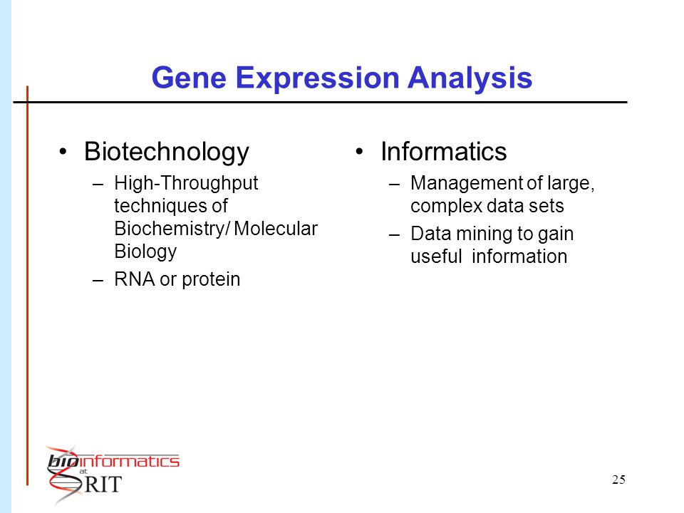 25 Gene Expression Analysis Biotechnology –High-Throughput techniques of Biochemistry/ Molecular Biology –RNA or protein Informatics –Management of large, complex data sets –Data mining to gain useful information