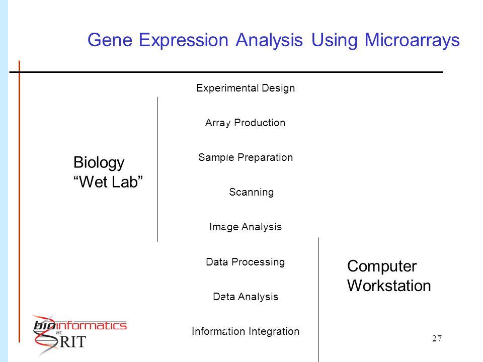 27 Experimental Design Array Production Sample Preparation Scanning Image Analysis Data Processing Data Analysis Information Integration Gene Expression Analysis Using Microarrays Biology Wet Lab Computer Workstation