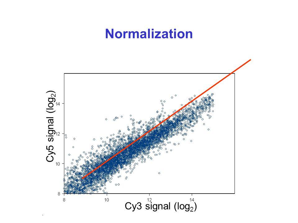 Normalization Cy3 signal (log 2 ) Cy5 signal (log 2 )